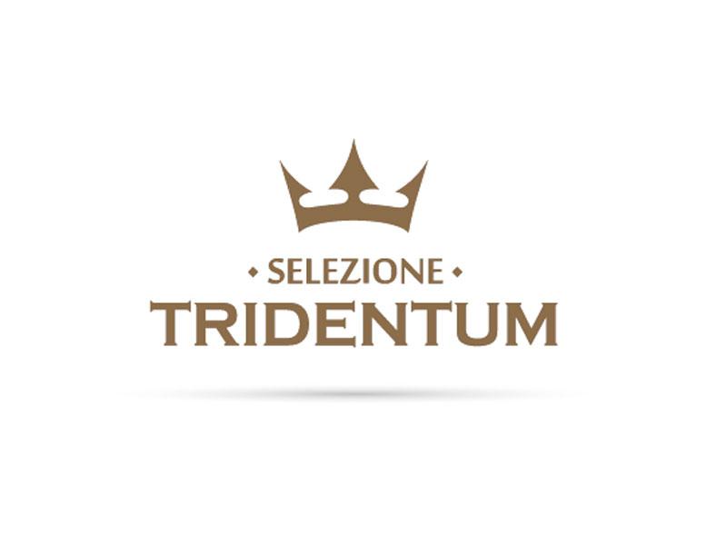 """Catalogo Segata """"Collezione Tridentum"""""""