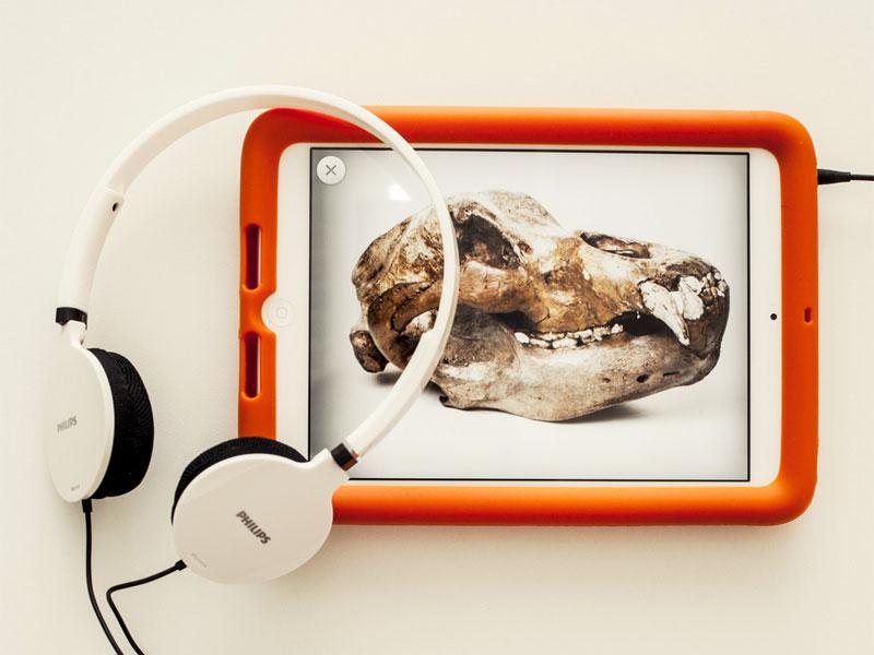 Guida multimediale del MUSE by GRAFFITI